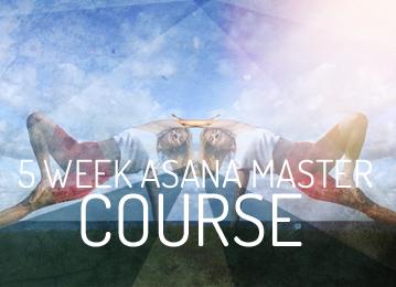 urban om 5 week asana master course